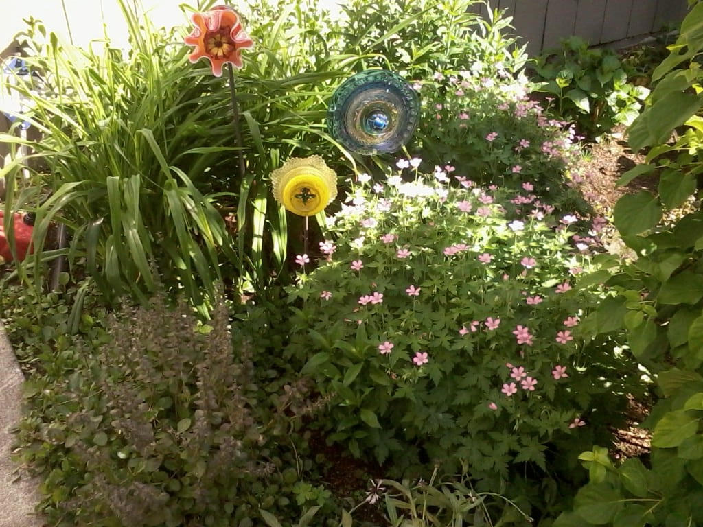 glass plate flowers