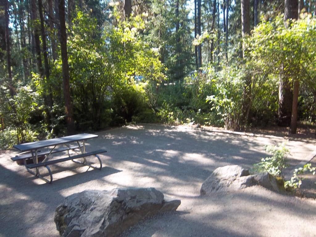 Farragut State Park Campsite