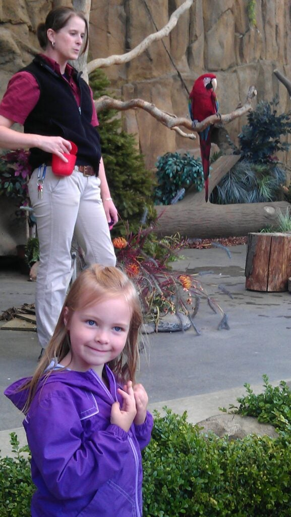 Pt Defiance Zoo – Half Priced Admission for Half Day