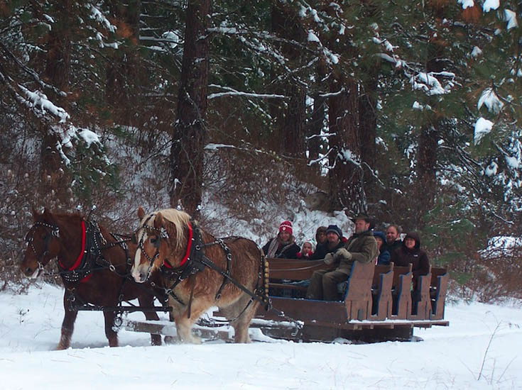 Leavenworth Wa. Lighting Festival Trip & Sleigh Ride