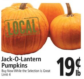 Pumpkins $.19/lb at Top Foods (20 lb Pumpkin for $3.80)!