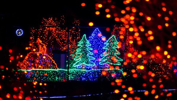 Point Defiance Zoolights Giveaway – 2 Families will win a Family Four Pack of Tickets!