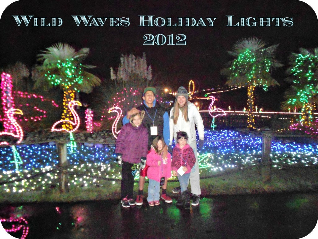Night lights holiday - Wild Waves Has Once Again Started Up Their Family Tradition After Many Years Holiday With Lights We Attended Opening Night To Get Some More Details On