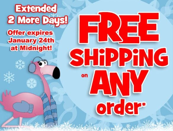 Oriental Trading Company – FREE Shipping Extended through January 24th