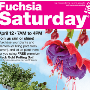 Fred Meyer Fuschia Event