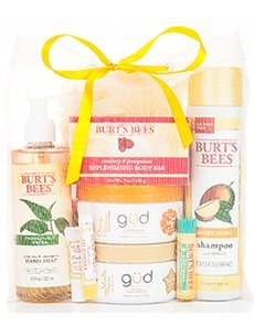 Burts Bees – $30 Gift Bag (11 Full Sized Items & More, $70 Value)!!