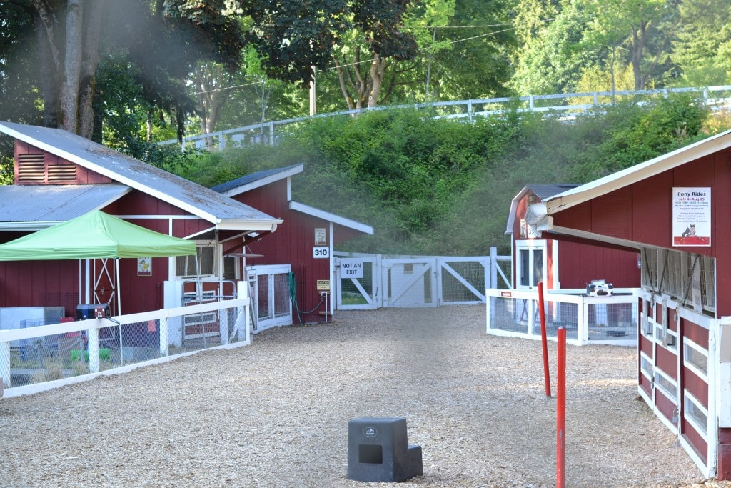 Forest Park Review – Everett Wa.: Free Petting Zoo, Spray Water Play & Much More!