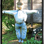 DIY Scarecrow – How to Make A Scarecrow with Items Around The House!