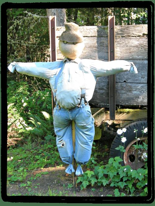 Diy Scarecrow 2