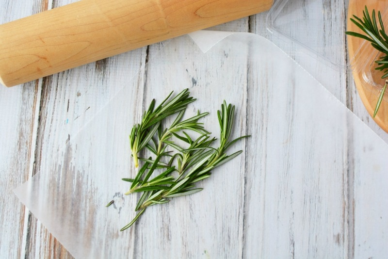 Washing & drying Rosemary for Olive Oil
