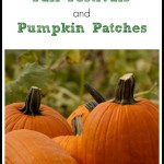 Pacific Northwest Fall Festivals