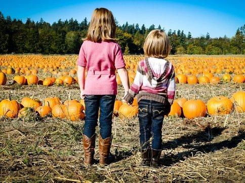Pumpkin Patch Fun – Thomasson Farm Enumclaw