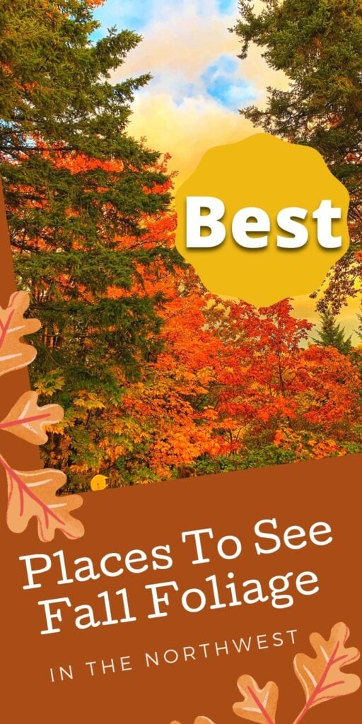 Fall Foliage: Places to View in Seattle, Portland & More!