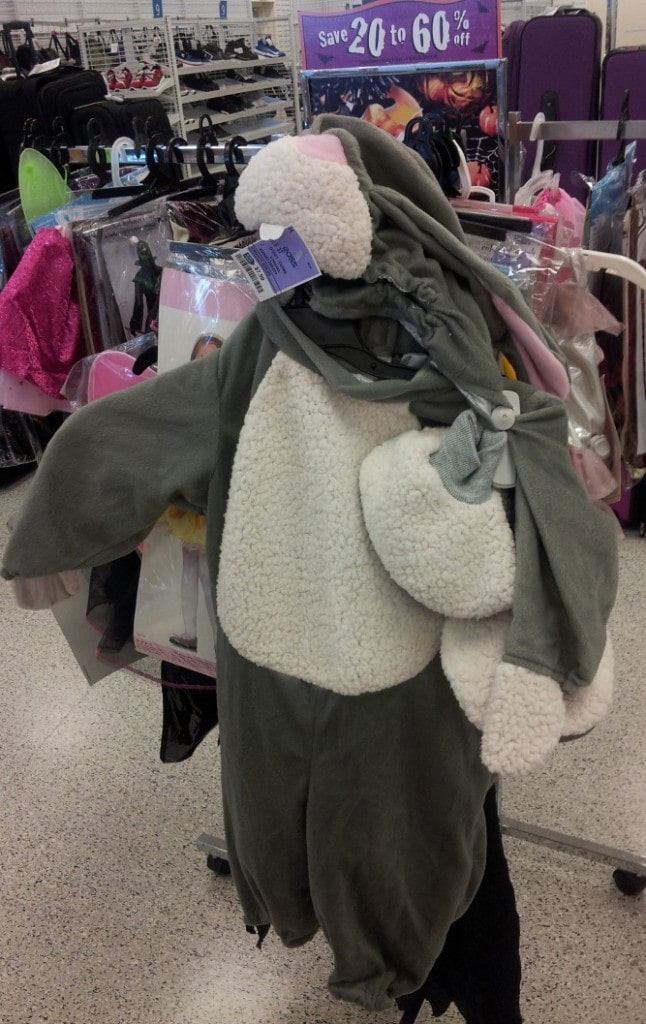 Bunny costume at Ross