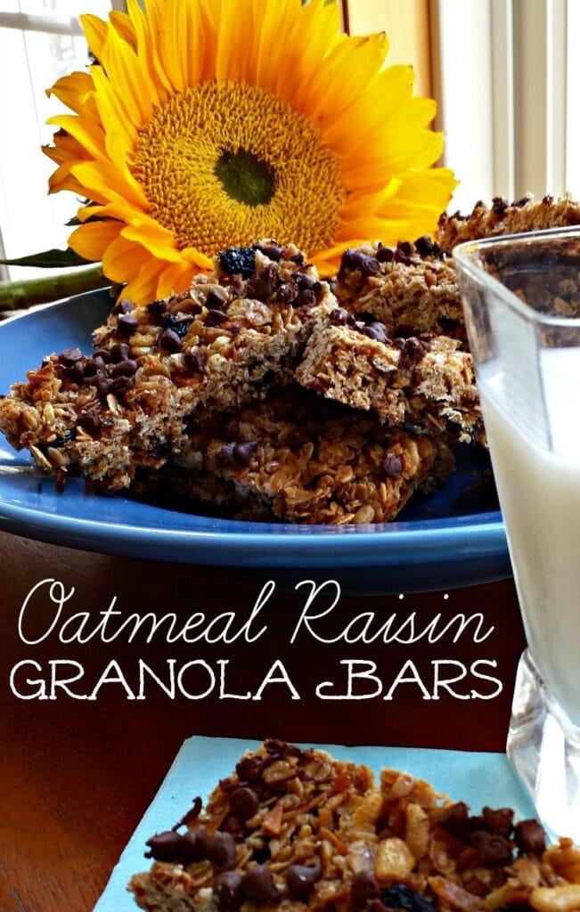 Oatmeal Raisin Granola Bars