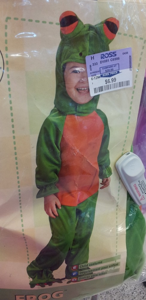 Frog Costume at Ross