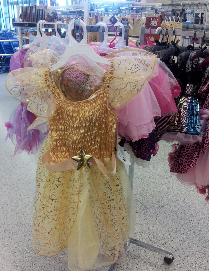 princess costume at ross