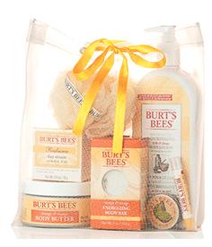Burt's Bees Grab Bag – On Sale for $20 ($50 Value)
