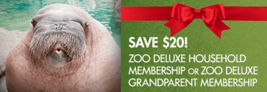 Point defiance zoo discounted membership