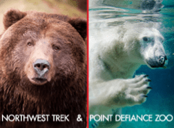 point defiance and northwest trek cyber monday deal