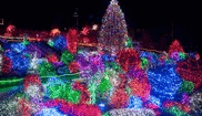 Discount Zoolights Tickets for Military & Veterans – December 9th and 16th