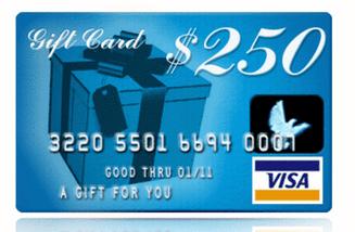 $250 visa gift card