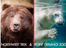 point defiance zoo and northwest trek discounts