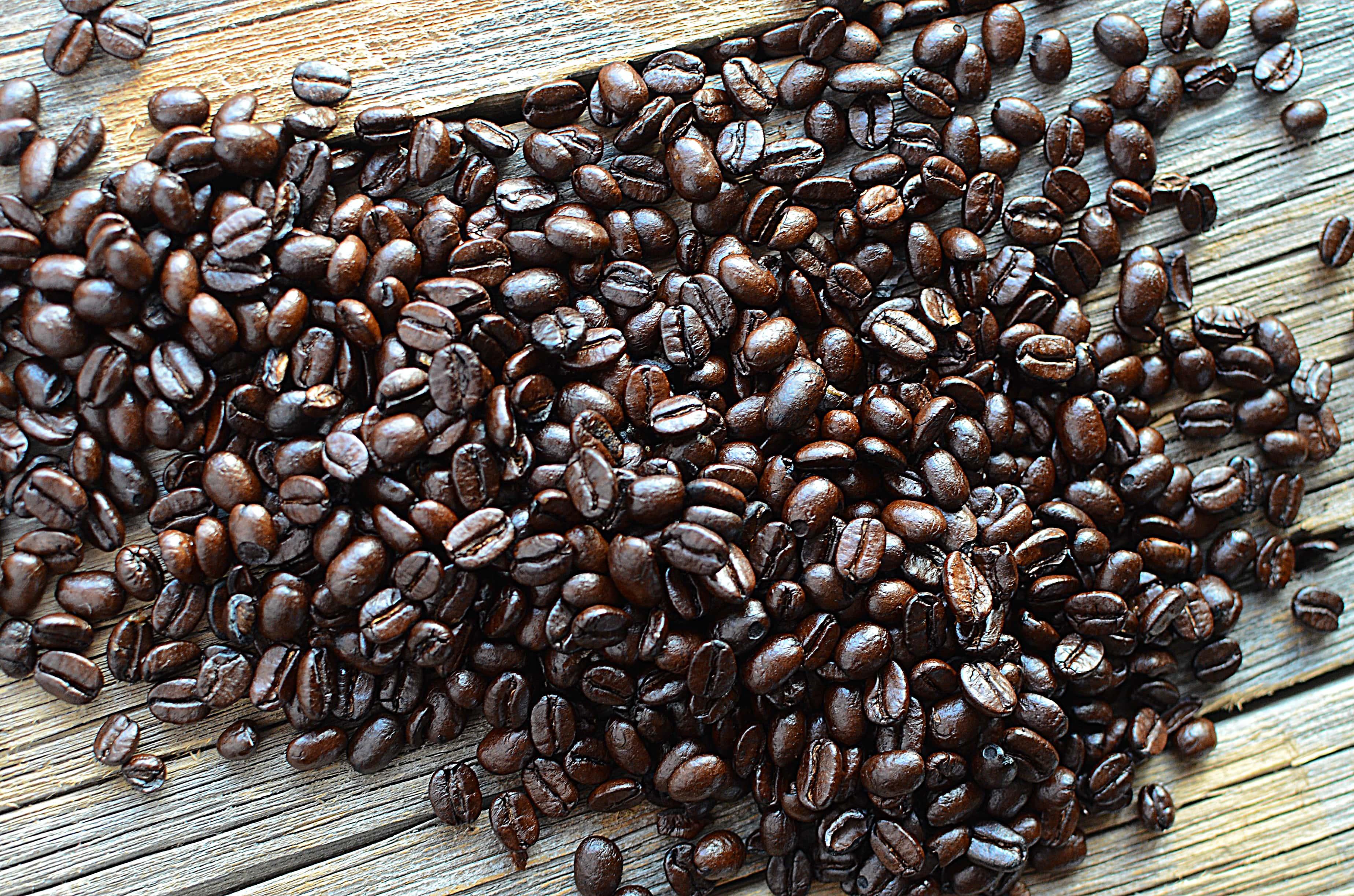 Espresso shoot 4