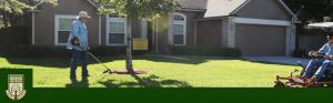 Free Lawn Care
