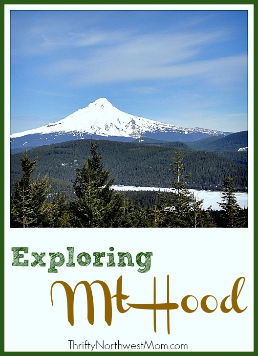 Family Friendly Activities at Mt Hood for all Seasons!