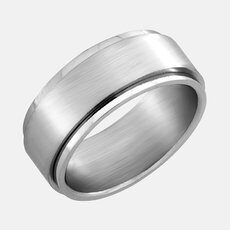Stainless Steel Ring with Brushed Finish Spinner
