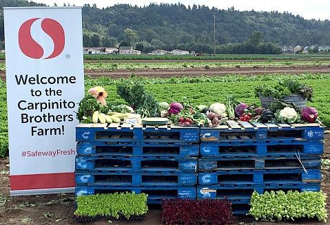 Produce from Carpinito Farms