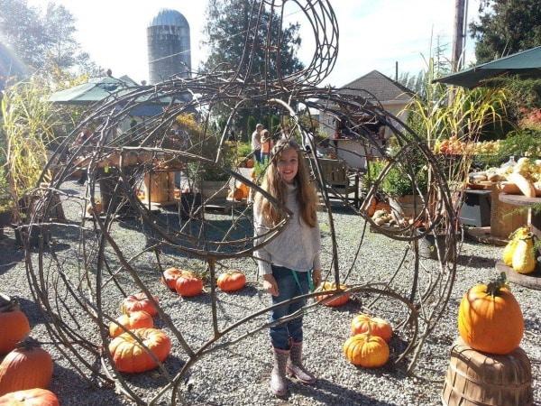 Skagit Valley Festival of Farms