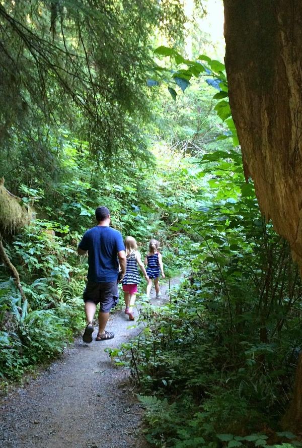 Quinault Rainforest Hike