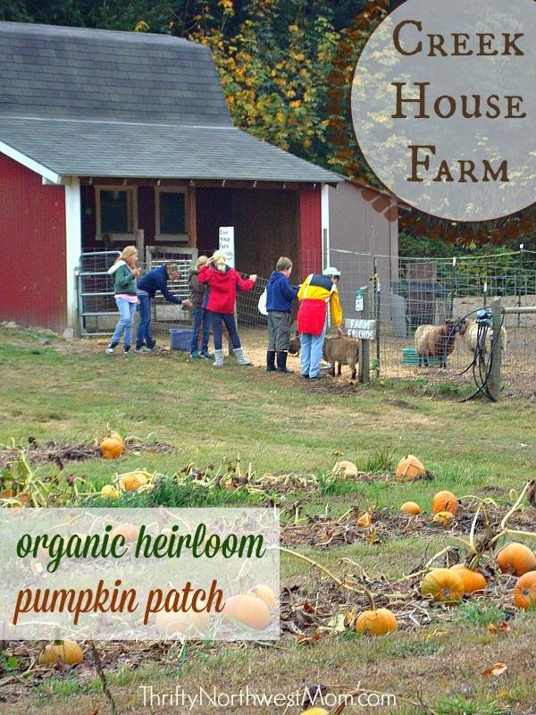Love creek pumpkin patch aptbittorrent for Farm house torrent