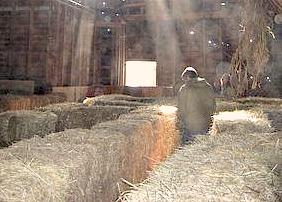 Jubilee Farm Hay Maze