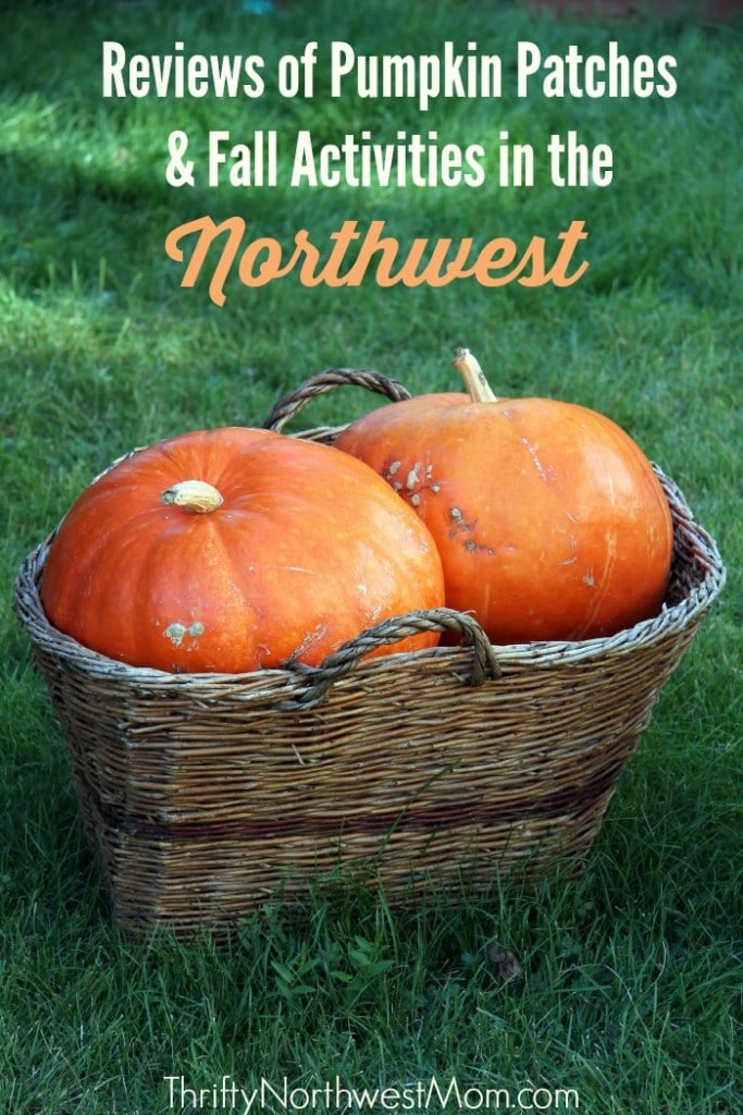 Reviews of Pumpkin Patches & Fall Activities in the Northwest