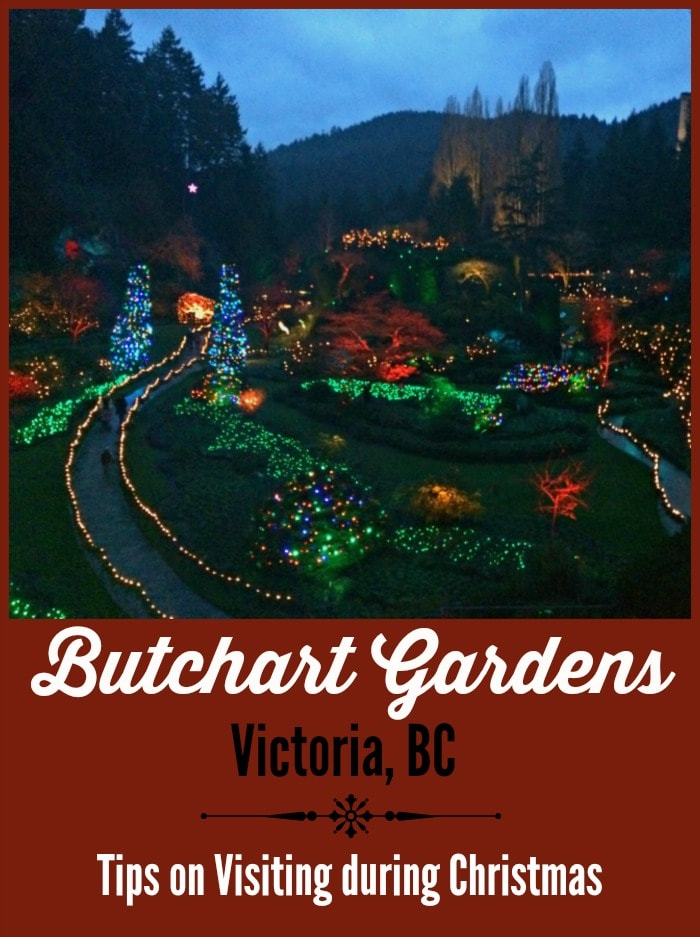 Butchart Gardens In Victoria Bc At Christmas