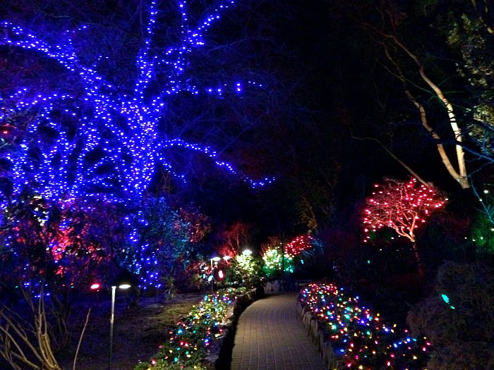 Christmas Time at Butchart Gardens