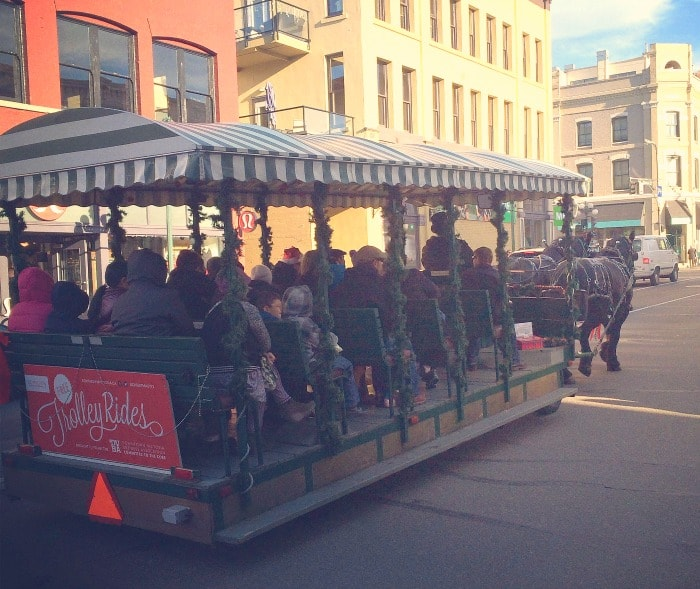 Victoria BC Horse Drawn Trolley Rides