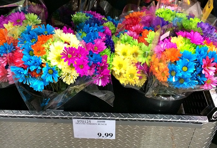 Costco Garden Bunch of Flowers for $9.99