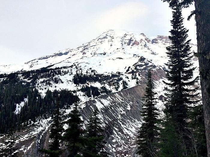 Mt Rainier Nisqually Vista View
