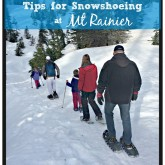 Snowshoeing at Mt Rainier - Tips on Where to Find Snowshoes, What to Bring & more