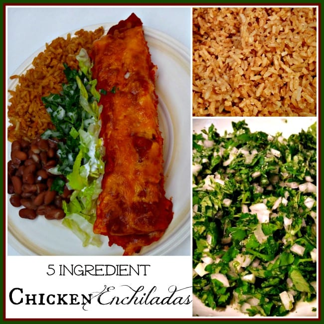 Mom's Chicken Enchiladas Recipe — Dishmaps