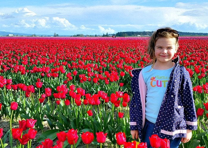 Pictures at the Skagit Valley Tulip Festival in Mt Vernon