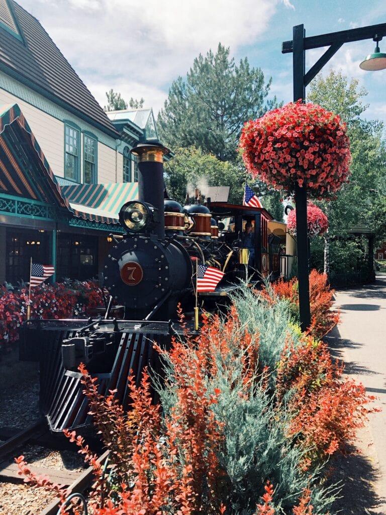 Silverwood Steam Train