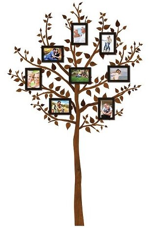 Boxed Set Tree Decal with Frames
