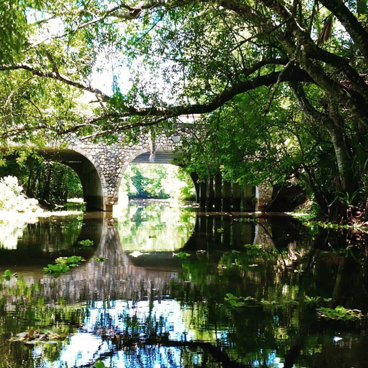 Canoeing the Loxahatchee River in Jupiter Florida