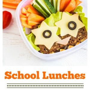 Lunchbox Cubes and Easy Packing Options for Healthy Lunches