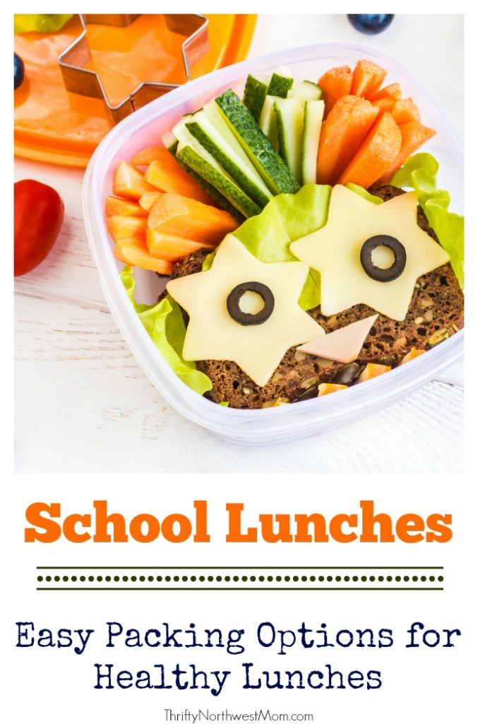 Here are some lunchbox ideas and easy packing options for healthy lunches as your kids head back to school.